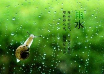 雨水节气的含义_关于雨水节气的简介