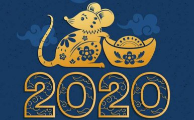 2020年春節作文700字精選5篇