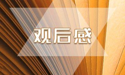孙红雷电视剧《新世界》有感600字大全最新3篇