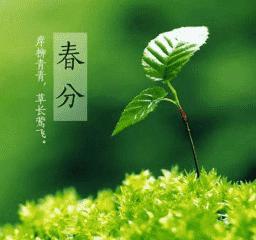 關于春分節氣的諺語和俗語 24節氣春分諺語大全