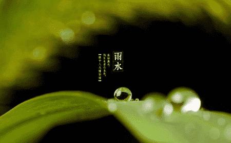 雨水节气的风俗有哪些?雨水节气吃什么食物?