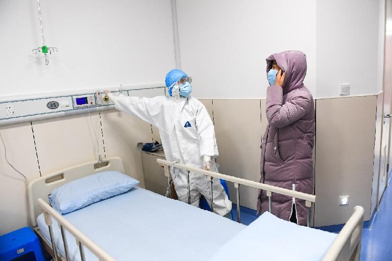 2020抗击武汉肺炎小学优秀作文800字5篇