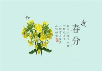 春分日太陽直射點_2020春分節氣習俗