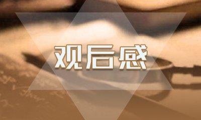 披甲逆行榮光而歸觀后感最新作文2020【5篇】