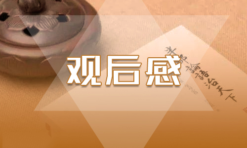 【最新中国机长票房】最新《中国机长》优秀影评心得观后感5篇精选_看中国机长有感