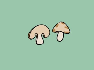 鲜美的蘑菇简笔画要怎么画