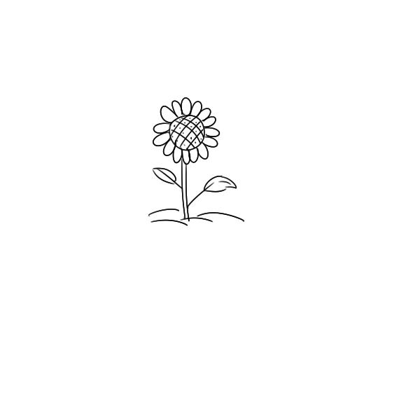 超简单的向日葵简笔画原创教程步骤
